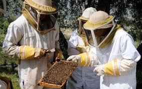 bee-keeper-class